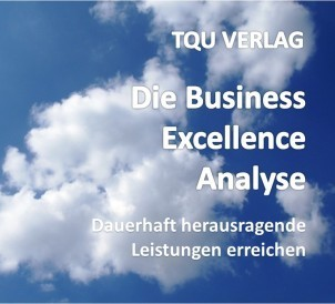 639 Die Business Excellence Analyse